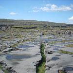 Inis Mór (Aran Islands)