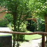etang cabanes dans les arbres