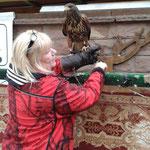 Frau Kölsch zieht den Falkner-Handschuh an