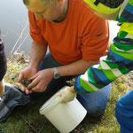 Herr Kösch holt eine Kröte aus dem See