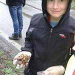 Auch Nico traut sich die Kröten auf die Hand zu nehmen
