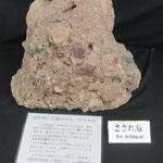 岐阜城資料館で国歌に出てくるさざれ石を撮影。綺麗な石の集まりに見えました。(盛岡 木皿義倫さん)