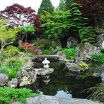 わが家自慢の庭園。7月になると蛍の乱舞が見られます(大槌 臼澤 富久さん)