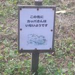 遠野市にあるかっぱ渕で貴重な情報をゲット。かっぱ渕の守り人が言うから間違いないです(県連書記局)
