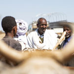 Sunday Cattle Market - Asmara