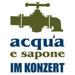 Logo für die Band acqua e sapone