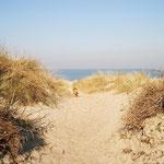 Zugang zum Strand bei Schaarendijke