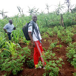 Visite des champs à MUBARAZI