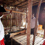 Visite d'une champigninnière au LM. Gihosha