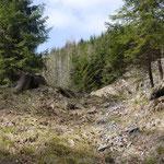 Das Schlikstal Standort einer alten Grube