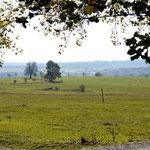 Hochfläche Blick nach Rübeland