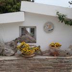 Ein Setterchen in Griechenland