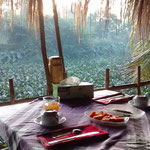 Frühstück auf der Terasse - mit ein paar Stechmücken!