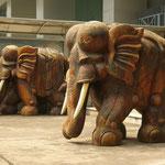 Symbol für eine vergangene Zeit: Elefanten und gewaltige Baumstämme