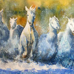 Camargue  SOLD