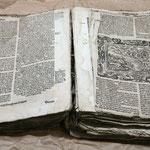 Martin Luther, Das neue Testament, 1592