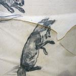 Reineke Fuchs, Detail