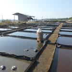 Meerwasser Salzgewinnung