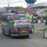 Minibus, local Transport