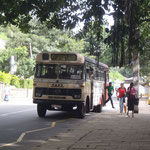 Autobus que je prends souvent