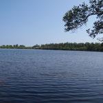 Lac salé