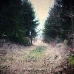 Weg um den Wingelsberg