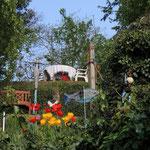 im Garten von Ute & Medio