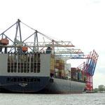 das größte Containerschiff