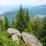 Blick zurück auf Oberradein
