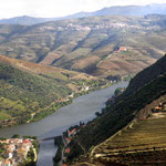 Rio Douro Tal des Portweins