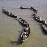 die Fischer auf der Suche nach den Delfinen