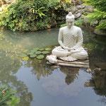 vor allem Meditatives
