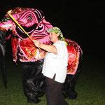 der Höhepunkt - Elefantentanz