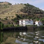 Weingut am Rio Douro