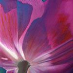 lila  Öl auf Leinwand  60x60x4cm