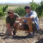Clay find at Newton Vineyard with Josh