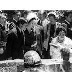 皇太子殿下・妃殿下に火炎瓶を投げる活動家