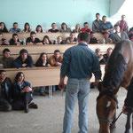 praktische Demo in der Uni Klinik Schmiede an einem Pferd mit High Low Syndrom
