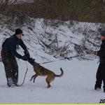 Winterschutzdienst mit Micha im Aubachtal
