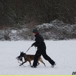Winterschutzdienst im Aubachtal