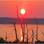 Coni's Sonnenuntergang