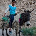stolzer Bub und sein Esel
