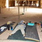 Nicky im Tiefschlaf bei 52,3° Celsius