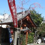 於岩稲荷陽運寺。小さいけれども趣きのある、良いお寺です。