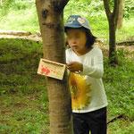 樹の名札掛け