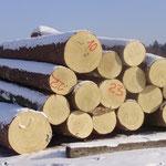 Bergfichte 5m lang - ausgesuchte Qualität aus Tirol 1200 m .ü.M.