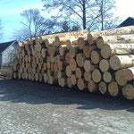 Holz aus den Karawanken Grenze Kärnten-Slowenien
