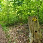 Wanderweg im Aargau
