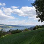 Blick in die Alpen mit Hallwilersee und Baldeggersee