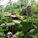 Behind the Gunung Kawi temple
